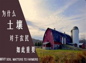 为什么土壤对农民如此重要