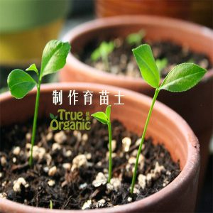 绿康有机园艺:制作育苗土的全攻略!