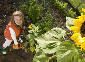 成为一个园艺爱好者,让你更爱上生活的乐趣!
