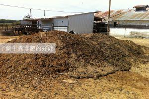 了解牛粪堆肥的好处