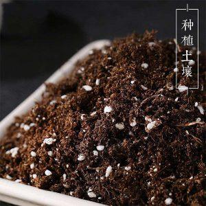 教你如何把废弃盆栽土壤再次利用