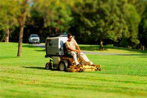 有机肥中的钾元素在草坪护理中的作用