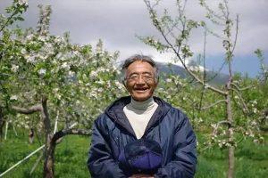 这位老人种出不会腐烂的苹果