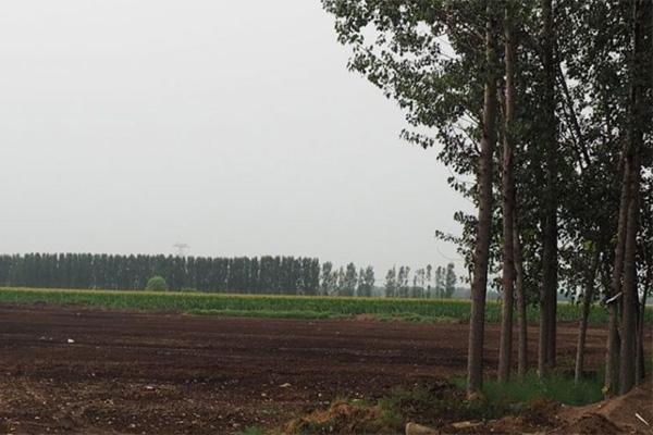 中国青年农民与土地的疏离