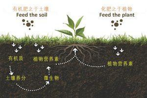 四大有机肥料的行业标准对比,看看有什么区别!