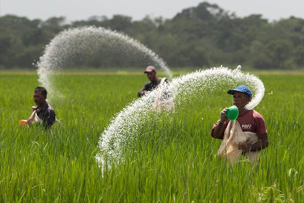 成都市绿康有机肥_有机肥和化肥区别_有机肥和化肥优点和缺点