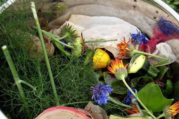 厨余垃圾_餐厨垃圾_餐厨垃圾处理_生活垃圾处理_未来垃圾处理_餐厨垃圾处理方式