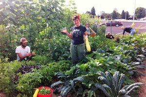"""城市厨余堆肥及社区花园实践指南,如何打造我们的""""城市森林"""""""