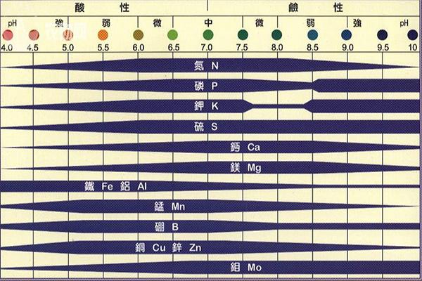 成都绿康有机肥_绿康有机肥_土壤PH_PH与元素吸收率