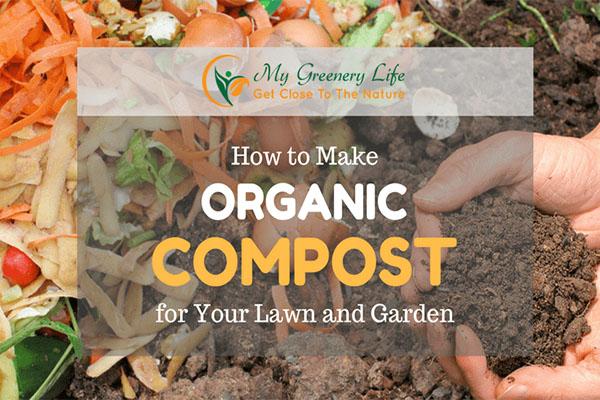 在厨房或庭院就能找到土壤的添加剂是什么
