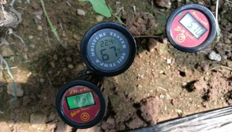 土壤科学_土壤病的成因和防治_土壤酸化