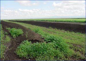 农场堆肥系统