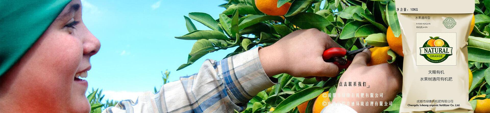 绿康果树有机肥