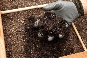 堆肥如何运作,我该如何控制它(part-3)