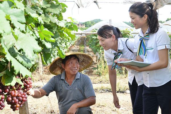 有机肥施肥方式_有机肥料价格_最好的有机肥料_优质有机肥料_有机肥怎么施肥