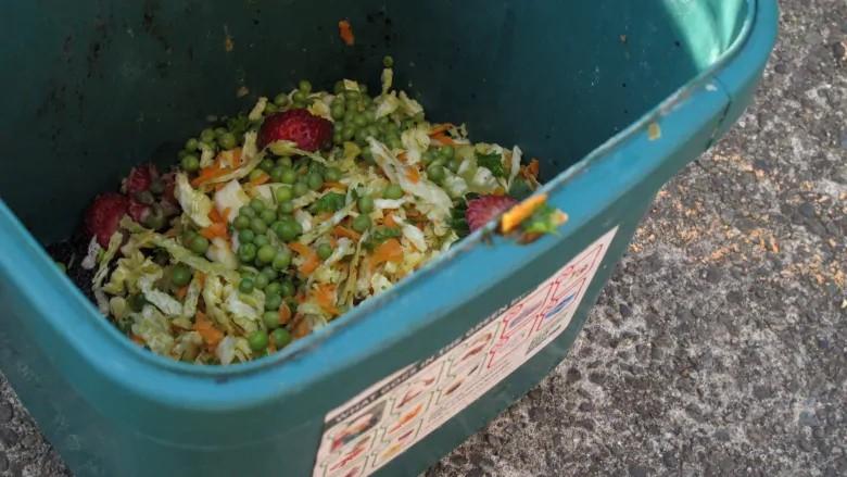 厨余垃圾去哪了,看看加拿大怎么做的?