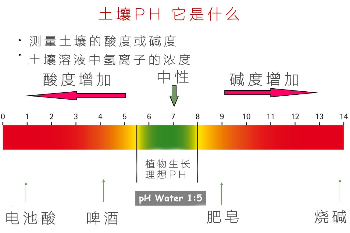 PH_作物最适合酸碱度