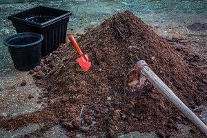 在春季施肥追肥有哪些技巧?