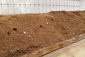 如何鉴别有机肥的质量好坏?有机肥使用中需要注意什么?