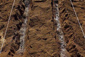 微生物菌肥什么时间用,根据土壤的情况和作物的情况也区别对待!
